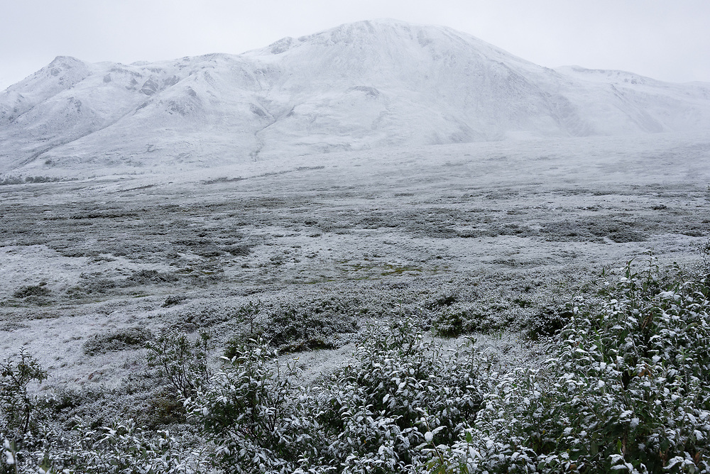 Light covering of snow in August; view of Stony Dome along Denali Park Road; Denali National Park Alaska; point on road at approx. 3850 feet