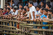 03 NOVEMBER 2012 - HAT YAI, SONGKHLA, THAILAND:   Spectators line the arena fence during a bullfight at the bullfighting arena in Hat Yai, Songkhla, Thailand. Bullfighting is a popular past time in southern Thailand. Hat Yai is the center of Thailand's bullfighting culture. In Thai bullfights, two bulls are placed in an arena and they fight, usually by head butting each other until one runs away or time is called. Huge amounts of mony are wagered on Thai bullfights - sometimes as much as 2,000,000 Thai Baht ($65,000 US).     PHOTO BY JACK KURTZ