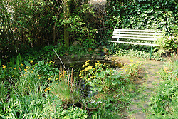 Natuurrijke tuin in Kortenhoef