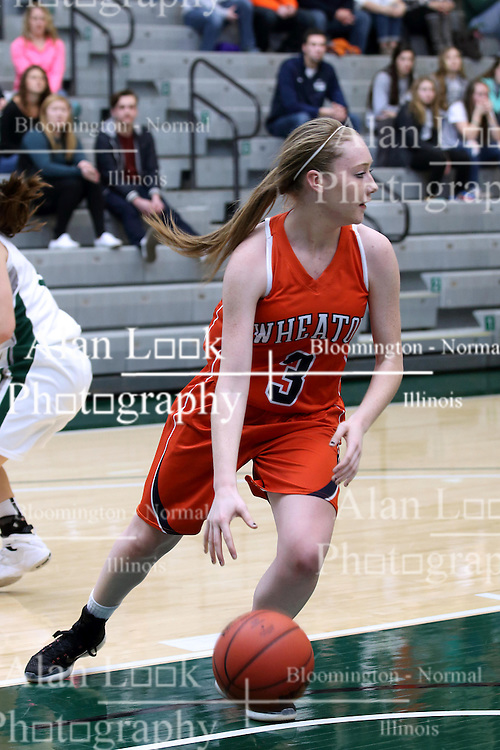 07 January 2017:  Jordan Myroth during an Wheaton Thunder and the Illinois Wesleyan Titans in Shirk Center, Bloomington IL