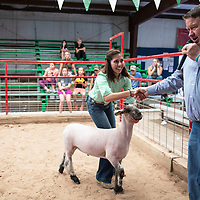 Sara Gurule shakes hands with Aaron Preator the judge who just announced her lamb first place in the medium light class market show, Friday, August, 31, 2018 at the Bi-County Fair in Prewitt.