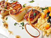 LV Bistro Scallops at The Fairmont Scottsdale Princess Resort in Scottsdale, Arizona