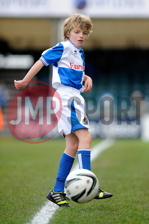 mascot - Photo mandatory by-line: Dougie Allward/JMP - Tel: Mobile: 07966 386802 07/12/2013 - SPORT - Football - Bristol - Memorial Stadium - Bristol Rovers v Crawley Town - FA Cup - Second Round