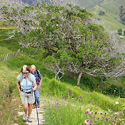 Walkers on the Coromandel Coastal Walkway with Discovery Tours. The walk from Fletcher Bay takes a comfortable 3 to 4 hour traversing farmland, coastline and pristine native bush and finishing in Stony Bay.  Coromandel, New Zealand. 30th November 2010. Photo Tim Clayton.