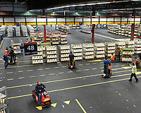The worlds largest flower auction site in Aalsmeer, Netherlands. Image taken with a Nikon 1 V2 camera and 6.7-13 mm lens.