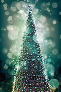 Digitally enhanced image of a Christmas tree
