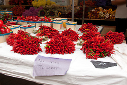 "A table of red hot chili peppers looks so much like a still-life painting that the vendor has put out a ""Do Not Touch"" sign.  Vintage clothing, toys, and antiques share sidewalk space with amazing food and working artists during the Sunday flea markets for which the town of L'Isle-sur-la-Sorgue is famous."