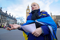 Ukrainian Protest, Parliament Square, London. Parliament Square, London, United Kingdom. Friday, 21st February 2014.  Photo by i-Images