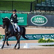 2018 FEI World Equestrian Games