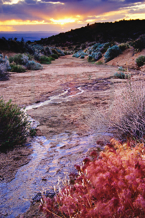 gentle stream meandering underneath a dramatic sunset sky in the sandia mountains of new mexico, usa.