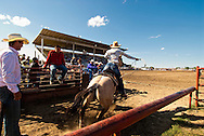 Crow Fair, Indian rodeo, Breakaway Roper, Crow Indian Reservation, Montana
