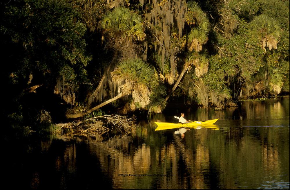 Kayaking, Braden River, Florida