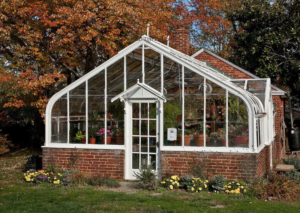 On the grounds of the Mount Vernon Unitarian Church, a view of the greenhouse in the autumn, filled with chrysanthemums and other autumn plants offered for sale.