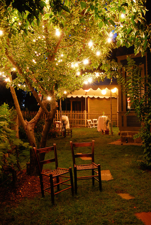 Backyard decorations for a backyard wedding in Dorchester, MA.