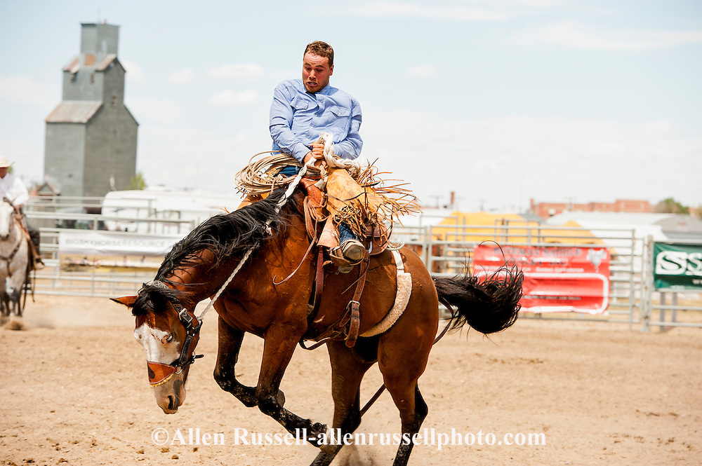 Will James Roundup, Ranch Rodeo, Ranch Bronc Riding, Taylor Hoatson, Hardin, Montana.