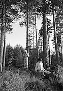 Skogsvandring i Tiveden