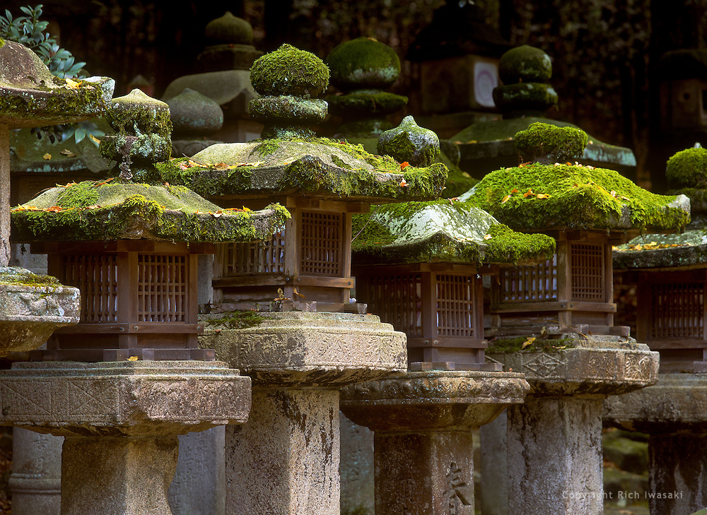 View of moss-covered stone lanterns at Kasuga-jinja (shrine), Nara, Nara Prefecture, japan