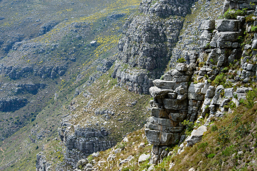 Sandstone cliffs on the slopes of Table Mountain. Western Cape, South Africa.