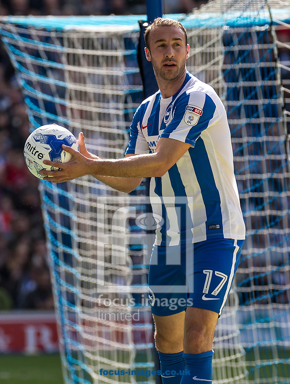 Glenn Murray of Brighton &amp; Hove Albion during the Sky Bet Championship match at the American Express Community Stadium, Brighton and Hove<br /> Picture by Liam McAvoy/Focus Images Ltd 07413 543156<br /> 01/04/2017