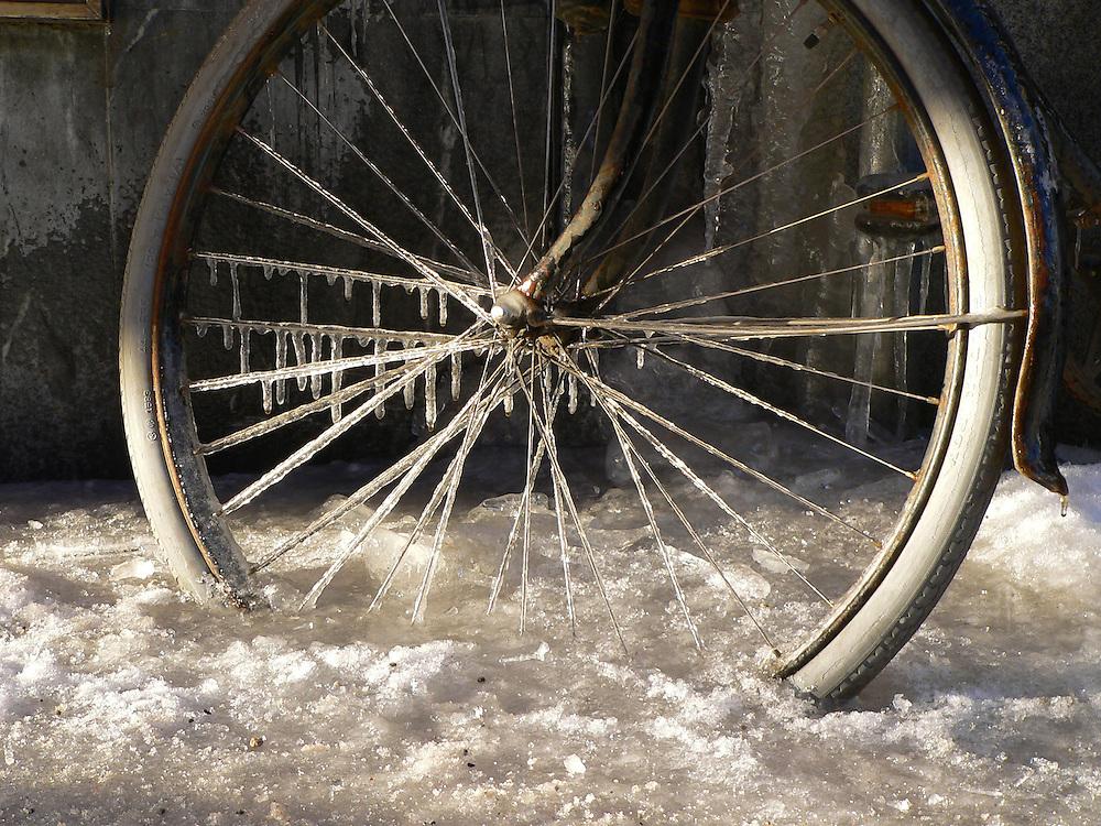 Fastfruset cykelhjul