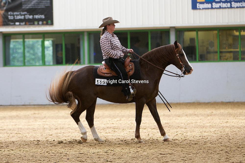 WES Northern Show 2012<br /> Myerscough College, Preston, Lancashire