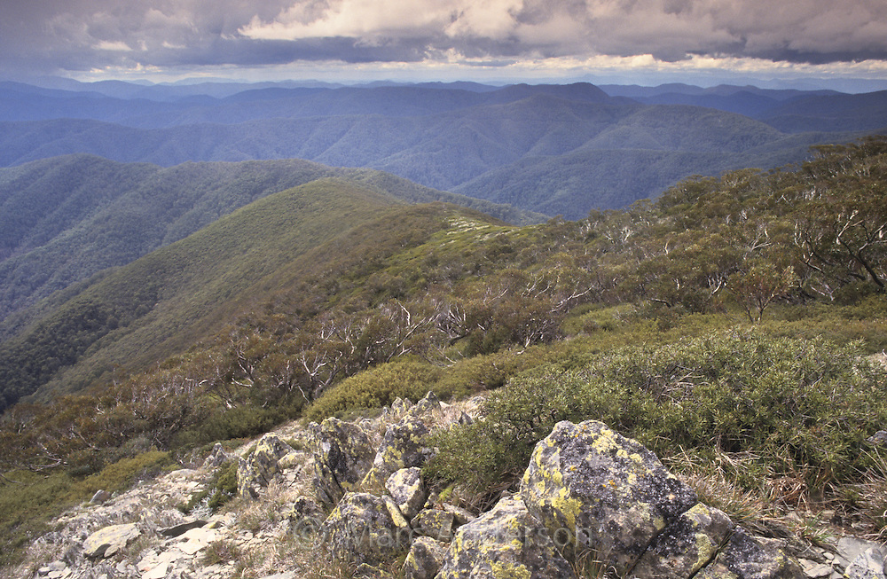 A view over the Alpine National Park, Australia.