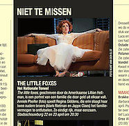 the little foxes | press&promo
