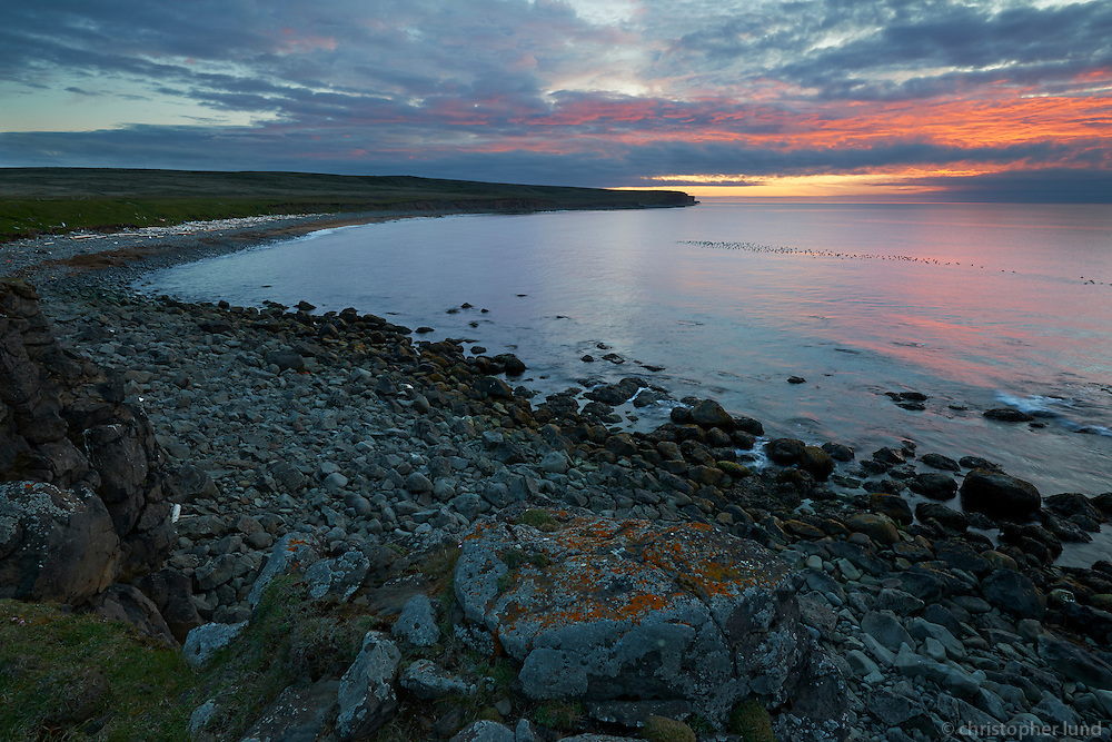 Skoruvík by sunset, Langanes Northeast Iceland. Common Eider ducks on the water.