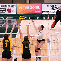 1st year outside hitter Jessica Lerminiaux (12) of the Regina Cougars in action during Women's Volleyball home game on November 3 at Centre for Kinesiology, Health and Sport. Credit: Casey Marshall/Arthur Images