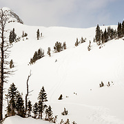 Steep & Deep participant skiing a backcountry line.
