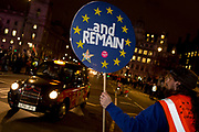 Remain protesters (pro-EU) gather in Westminster before the result of MPs' Meaningfull Brexit vote which eventually brought about a massive defeat for Prime Minister Theresa May's Conservative government, on 15th January 2019, in Westminster, London, England.