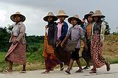 FORCED LABOR ROAD - MYANMAR