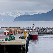 Fishing fish. Three weeks aboard the Kong Harald. Hurtigruten, the Coastal Express.