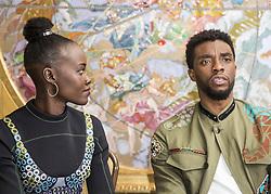 January 30, 2018 - Hollywood, CA, USA - Lupita Nyong'O  and Chadwick Boseman stars in the movie Black Panther (Disney)Marvel (Credit Image: © Armando Gallo via ZUMA Studio)