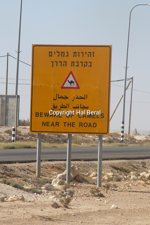Road sign warning about the danger of camels on the road<br /> Negev Desert,Israel