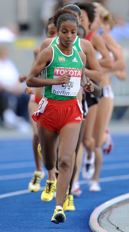 SENTAYEHU EJIGU (ETHIOPIA) COMPETES IN 500O METERS WOMEN QUALIFICATION ON THE OLYMPIC STADION ( OLIMPIASTADION ) DURING 12TH IAAF WORLD CHAMPIONSHIPS IN ATHLETICS BERLIN 2009..BERLIN , GERMANY , AUGUST 19, 2009..( PHOTO BY ADAM NURKIEWICZ / MEDIASPORT )..PICTURE ALSO AVAIBLE IN RAW OR TIFF FORMAT ON SPECIAL REQUEST.