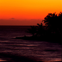Sunsets behind silhouetted trees, Glover's Island, Belize
