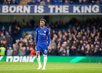 Football - 2018 / 2019 Premier League - Chelsea vs. Brighton & Hove Albion<br /> <br /> The highly regarded Callum Hudson-Odoi (Chelsea FC) under the Born is the King banner draped from the stand at Stamford Bridge <br /> <br /> COLORSPORT/DANIEL BEARHAM