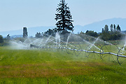 Crop Irrigation Comox Valley Vancouver Island Canada