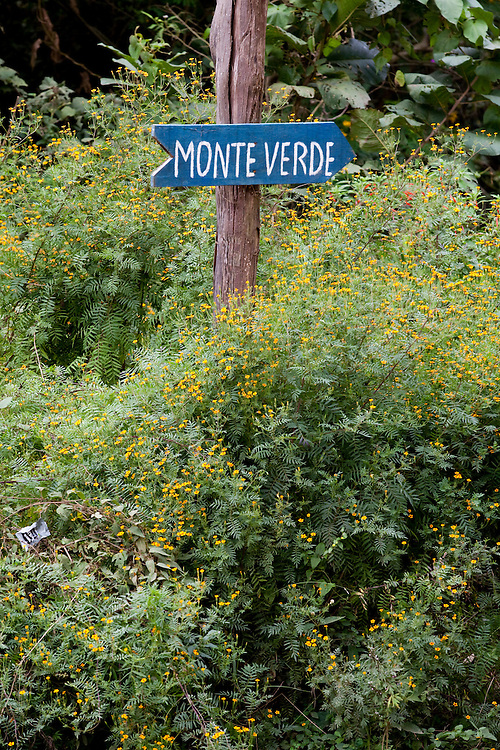 Goncalves_MG, Brasil...Placa indicando cidade de Monte Verde em Goncalves...The indicating sign for Monte Verde town in Goncalves...Foto: LEO DRUMOND / NITRO.....