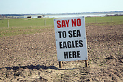 Protest sign against introduction of white-tailed sea eagle birds to Suffolk coast, Blythburgh,