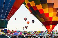 Hot air balloons ascending at the Albuquerque, New Mexico International Hot Air Balloon Festival.