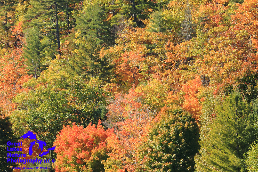 Autumn in the Keweenaw