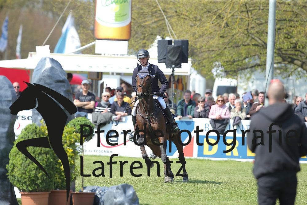 Haßmann, Felix (GER) Horse Gym´s Quali Quanti<br /> Redefin - Pferdefestival 2016<br /> © www.sportfotos-lafrentz.de