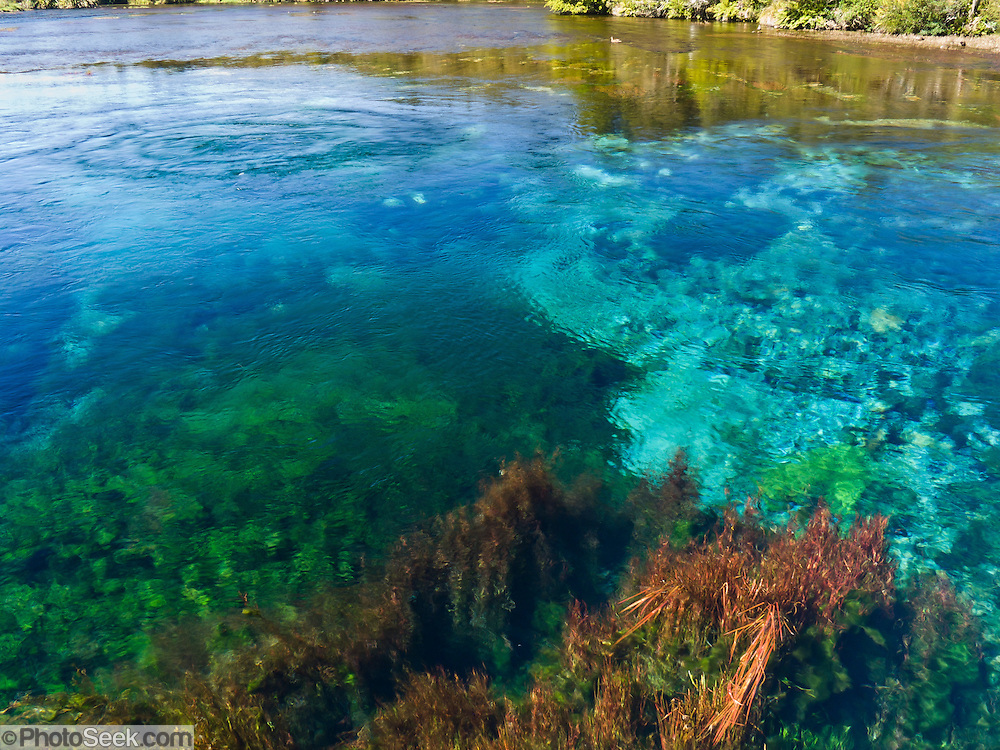 Waikoropupu Springs are one of the largest and clearest springs in the world. South Island, New Zealand.