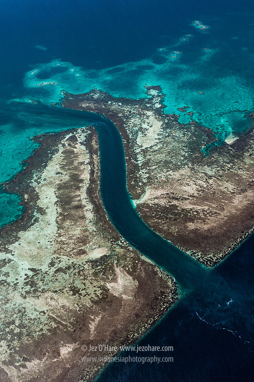 Lentea island reef, Tomia, Wakatobi National Park, Tukang Besi Islands, South East Sulawesi, Indonesia