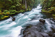 The ice-blue waters of Oregon's McKenzie River tumble through a dramatic series of rapids below Sahalie Falls.