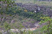 Sao Goncalo do Rio Preto_MG, Brasil...Parque Estadual do Rio Preto em Sao Goncalo do Rio Preto, Minas Gerais...Estadual Park of Rio Preto in Sao Goncalo do Rio Preto, Minas Gerais...Foto: JOAO MARCOS ROSA / NITRO