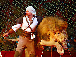 September 15, 2016 - Kiev, Ukraine - An Ukrainian National Circus artist performs with a lion during the presentation of the new show program  ''Extreme Arena'' at the Ukrainian National Circus in Kiev, Ukraine, 15 September,2016. The show will be staged from 15 September to 11 December 2016. (Credit Image: © Str/NurPhoto via ZUMA Press)