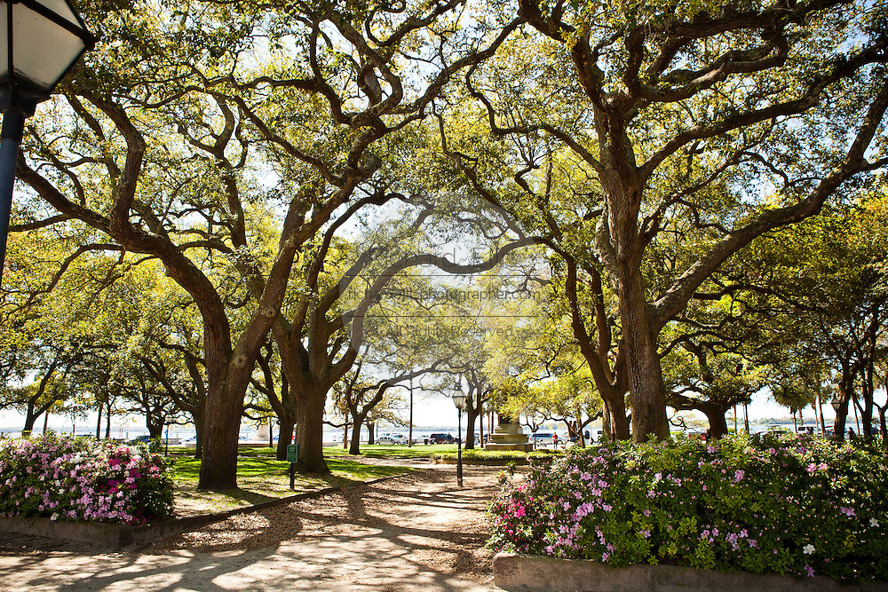 White Point Gardens along the Battery in Charleston, SC.